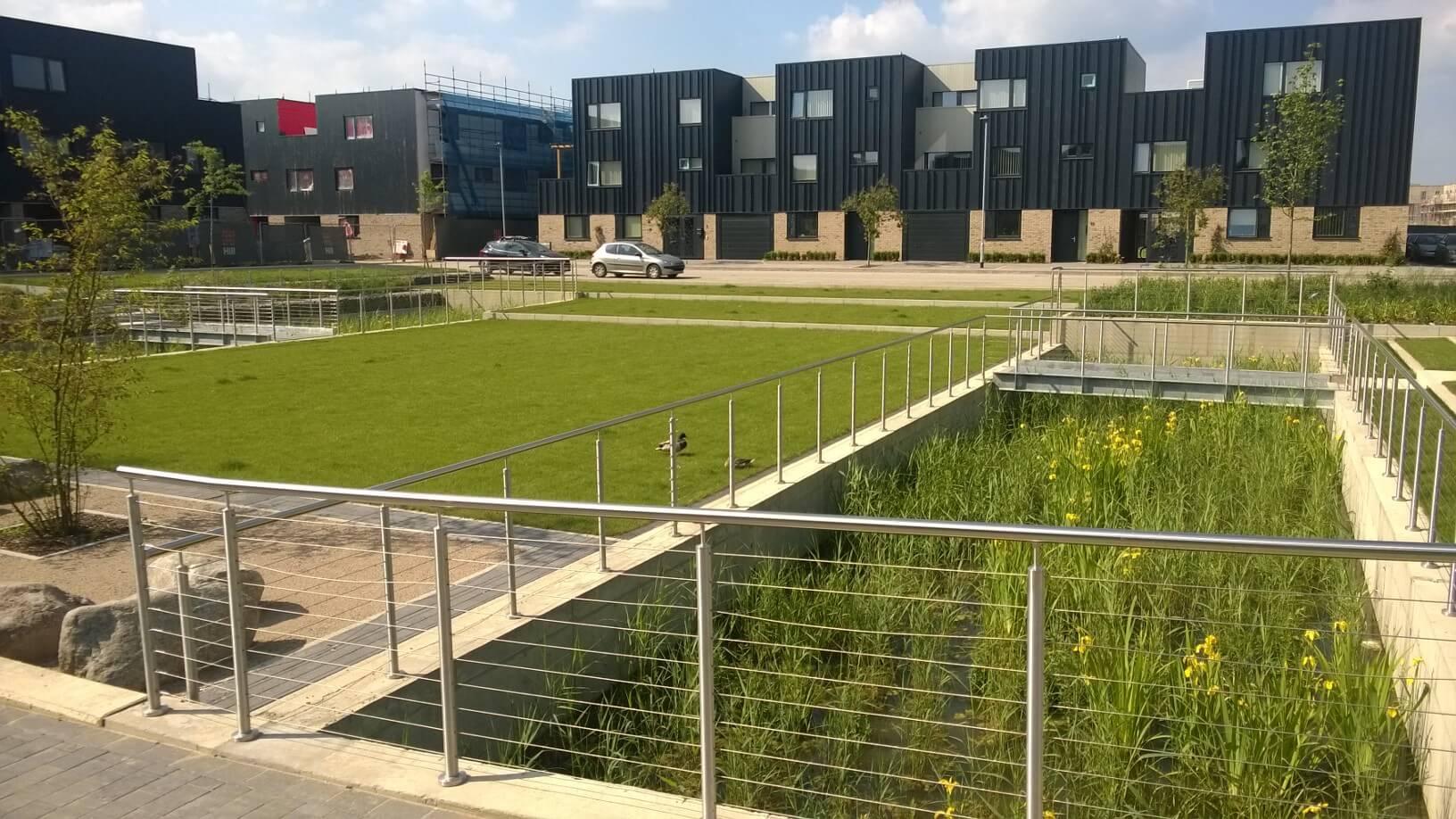 Cambridge – Clay Farm (The Quad 2013)