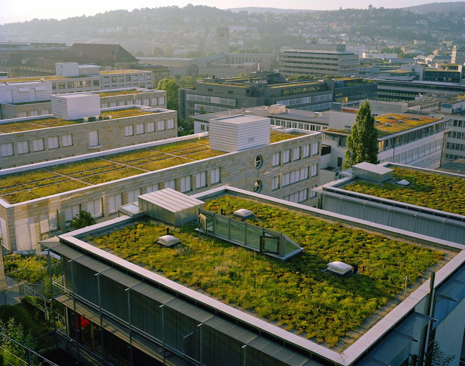 How green is your roof? How clear is your water?