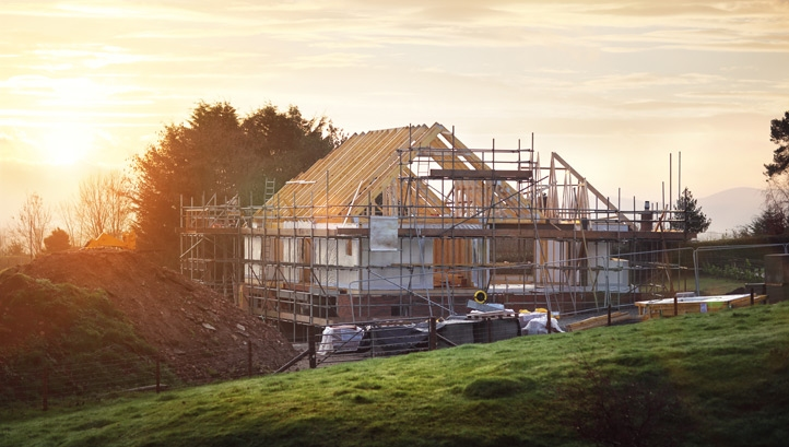 Built environment sector calls for biodiversity focus in upcoming Environment Bill