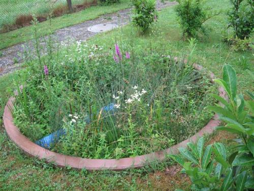 Eco-Soil-Filter-04
